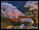 都市伝説講座321 (2013/03/22) thumbnail