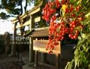 【ニコニコ動画】【高画質】古社の風景 ~山城 諸羽神社~を解析してみた