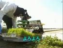 20130413-4 暗黒放送Q 暗黒米を作る休憩放送 3/7