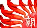 【ニコニコ動画】【旭日旗先輩】東亜レイプ!軍国主義の象徴と化した先輩BB.ASHを解析してみた