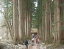 【ニコニコ動画】信州旅行記 善光寺~戸隠神社~諏訪大社を一日でまわる。を解析してみた