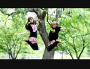 【ニコニコ動画】【りぃ】・:*:・スイートマジック踊ってみた・:*:・【まるこ】を解析してみた