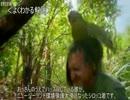 第71位:ゆっくり動物雑学「ニュージーランドでは…」 thumbnail