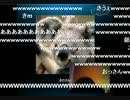【ニコニコ動画】出会い系サイトで出会ったおじさんとスカイプしてみた【ミート源五郎】を解析してみた