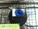 【ニコニコ動画】学校の美術教材で指輪を作ってみたを解析してみた