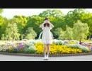 【こにたん】GIFT【踊ってみた】 thumbnail