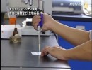 【新唐人】米企業H7N9ワクチン開発 中共は実験室で「生物兵器」