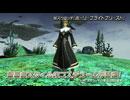 初夏の中規模アップデート「夢幻の練武」紹介ムービーPart2 thumbnail
