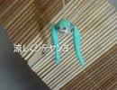 【手芸祭】日本の夏っぽいの作ってみた【遅刻ですが】