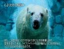 第89位:ゆっくり動物雑学「シロクマの毛は…」 thumbnail
