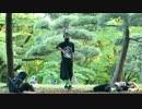 【いっこう鳩子林檎酢】にんじゃりばんばん舞台裏【忍んで忍んでー!】