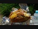 【ニコニコ動画】【淡路島バーガー】とっとこ兵庫県ツーリング【西宮】を解析してみた
