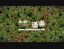 【ニコニコ動画】スーパー道楽 vol.5 アンティークガンを撃つ M1895を解析してみた