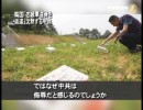 【新唐人】韓国「志願軍遺骨を返還」沈黙する中共