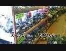 【ニコニコ動画】そうだバイク直そう/GSX250S 008 部品探訪-パーツを求めてを解析してみた