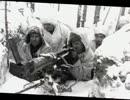 【ニコニコ動画】第二次世界大戦中のマイナーな枢軸国まとめを解析してみた