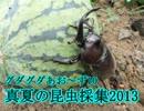 【ニコニコ動画】真夏の昆虫採集2013(前編)【グダあお10】を解析してみた
