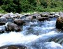 【ニコニコ動画】川のせせらぎを解析してみた