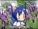 【KAITO_ENGLISH】BORDERLESS【カバー】