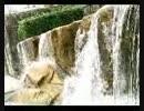 水の風景.mp4