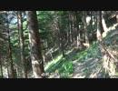 【ニコニコ動画】【素人が行く】南アルプス縦走 聖岳~赤石岳~荒川三山 1日目入山編を解析してみた