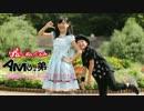 【ニコニコ動画】【AMU+弟】嘘とぬいぐるみ踊ってみた【ダンマス記念♪⌒ヽ(*゚ω゚)ノ 】を解析してみた