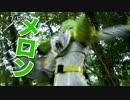 仮面ライダー戦国時代(長) thumbnail