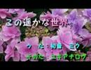 【初音ミク】この遥かな世界【オリジナル曲】.wmv