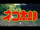【NAKA'sキッチン】 ねこ太郎とっとこうた 【踊ってみた】
