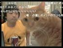 【ニコニコ動画】【2013/9/28 22:25】ピョコ生#118 オレ的ゲーム速報JINのガチゲームレビューを解析してみた