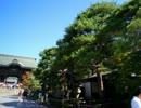 【ニコニコ動画】【ゆっくり】鉄道で日本一周part69【長野】を解析してみた