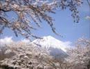 日本人なら思わず涙する日本はすごい国・
