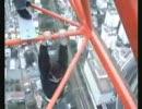 【神動画】手が滑ったら終了な狂気の懸垂