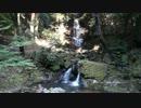 【酷道ラリー】山口県横断険道コース その3