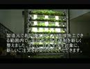 勝てる農業!室内養液水耕栽培の植物工場で野菜育て。