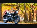 【ニコニコ動画】【ほぼソロツー】バイクゆかりのお店を訪ねて 後編【なめネコ】を解析してみた