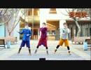 【ニコニコ動画】【ダンス練習用】妄想税を踊ってみた【反転75%】を解析してみた