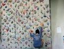 【ニコニコ動画】ボルダリング。始めたばかりの方向け。疲れにくい登り方。(20131206)を解析してみた