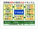 経済セミナー⑤『消費税増税で貧富の差が拡大し衰退し続けた日本経済』 thumbnail