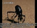 【ニコニコ動画】ゆっくり動物雑学「砂漠で…」を解析してみた