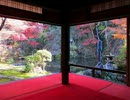 慈恩禅寺・荎草園 移りゆく季節と水琴窟の音色