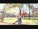 【ニコニコ動画】【みっちゃら】lllトゥルティンアンテナlll 踊ってみた〈ガオーッ!!〉を解析してみた