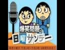 2014.1.5 爆笑問題の日曜サンデー 彦麻呂