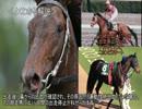 【ニコニコ動画】ゆっくり動物雑学「競走馬が鼻血を出すと…」を解析してみた