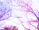 【KAITO】 桜ノ雨―微修正版― 【カバー】