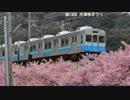 乗り鉄アー Vol.22 その3 河津桜まつり 東海道線~湘南新宿ライン(完)