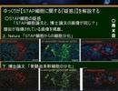 【ニコニコ動画】ゆっくりがSTAP細胞に関する『疑惑』を解説するを解析してみた