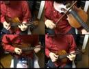 フレットバイオリンで弾いてみた! / ニンジーン Loves You Yeah !