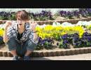 【ぶっきー】メランコリックC.S.P.リアレンジ 踊ってみた【feat.Freedel】