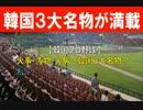 【韓国プロ野球】 火事・汚物・火病~韓国3大名物?
